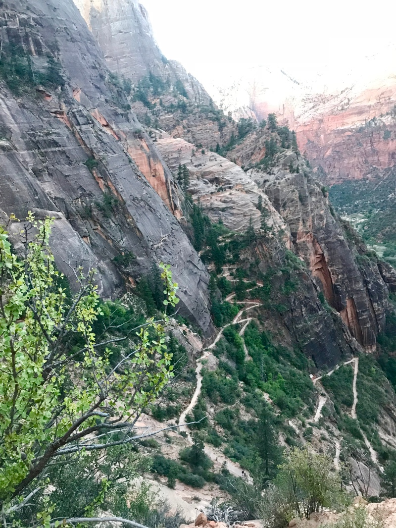 Observation-Point-Trail-Zion