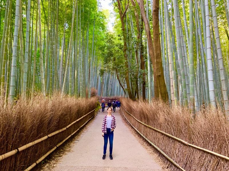 Arishayama Bamboo Forest Kyoto