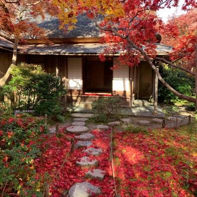 Okochi Sanso Villa gardens path autumn leaves colors