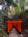 Fushimi Inari Shrine Torii Gates Kyoto