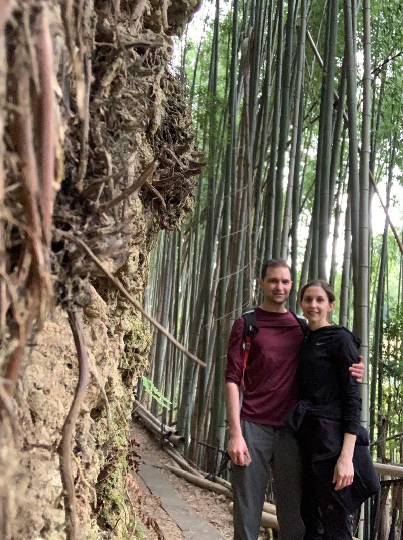 Secret bamboo forest Fushimi Inari Shrine Kyoto