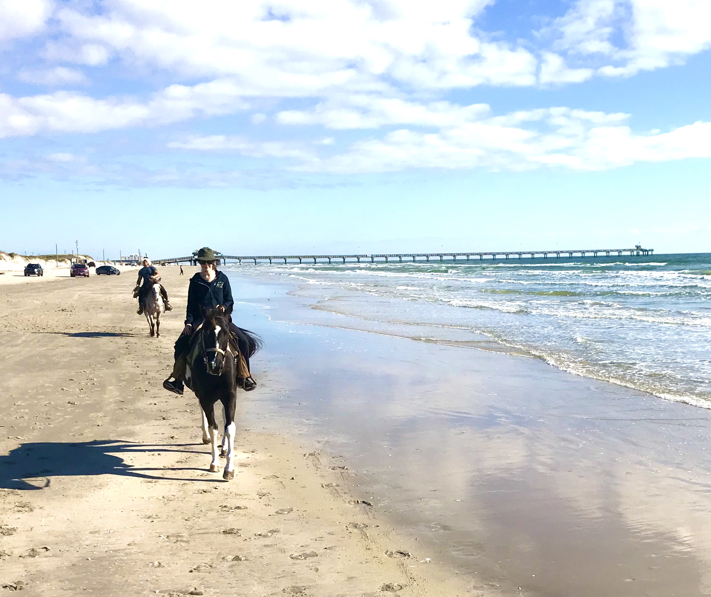 Horses on the Beach Corpus Christi Texas